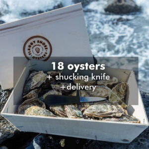 18 oysters and knife